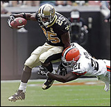 reggie bush nfl  career